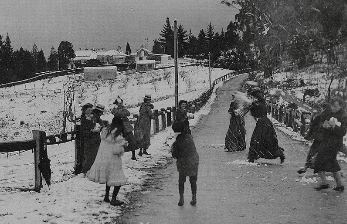 1905 snow mt Lofty